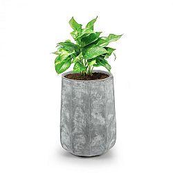 Blumfeldt Decaflor, květináč, 40 x 50 x 40 cm, sklolaminát, do interiéru i exteriéru, světle šedý
