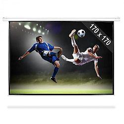 FrontStage PSBB-96, rolovatelné promítací plátno, 244cm,170x170 cm, 1:1