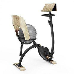KLARFIT Roomik Cycle, domácí trenažér, 8 kg setrvačník, držák na tablet, gymnastický míč