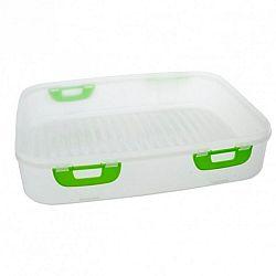 Orion Plastový box na piknik s klipy 40 x 30 x 8 cm